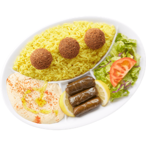 Vegetarian Lunch Special